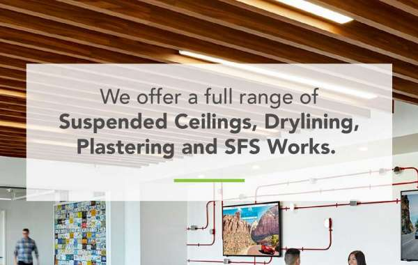 Get a perfect plastering for your house!