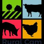 Rural Cam profile picture