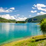 راما رامي profile picture