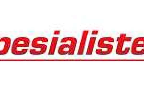 Nissan bildeler