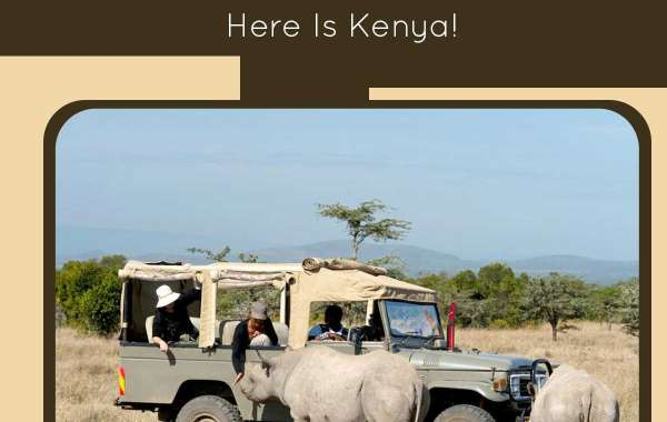 Eager to See the Adventurer's Paradise OnEarth? Here Is Kenya!