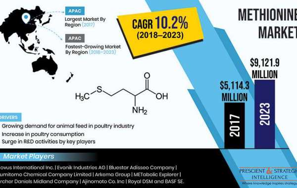 Rising Poultry Consumption Driving Methionine Market