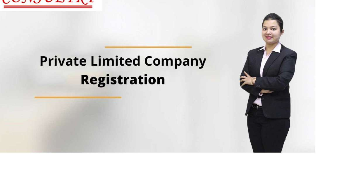 Private Limited Company Registration in Marathahalli.
