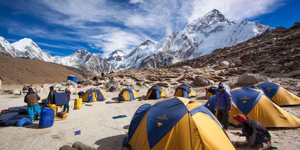 Best tours and travel services for Nepal tour