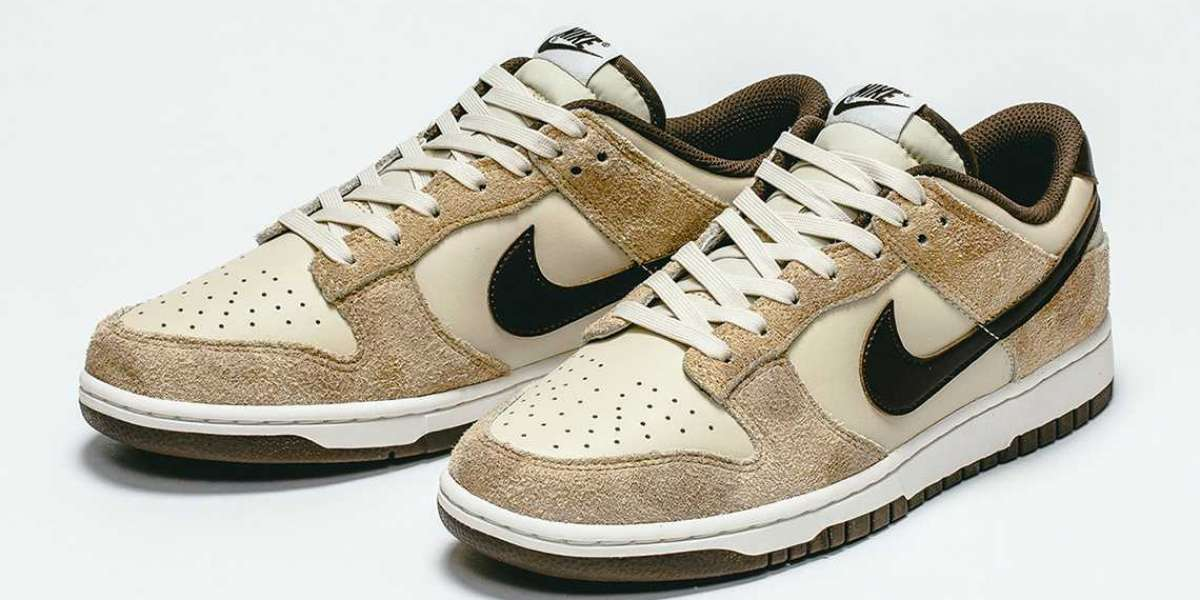 "Where To Buy The Nike Dunk Low ""Giraffe"" DH7913-200 ?"